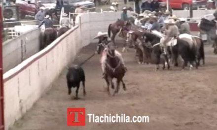 Primeras Coleadas, Coleadera Tlachichila 2014