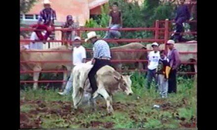 Jaripeo de 1997